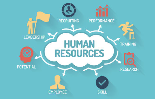 Human Resources - Chart with keywords and icons - Flat Design